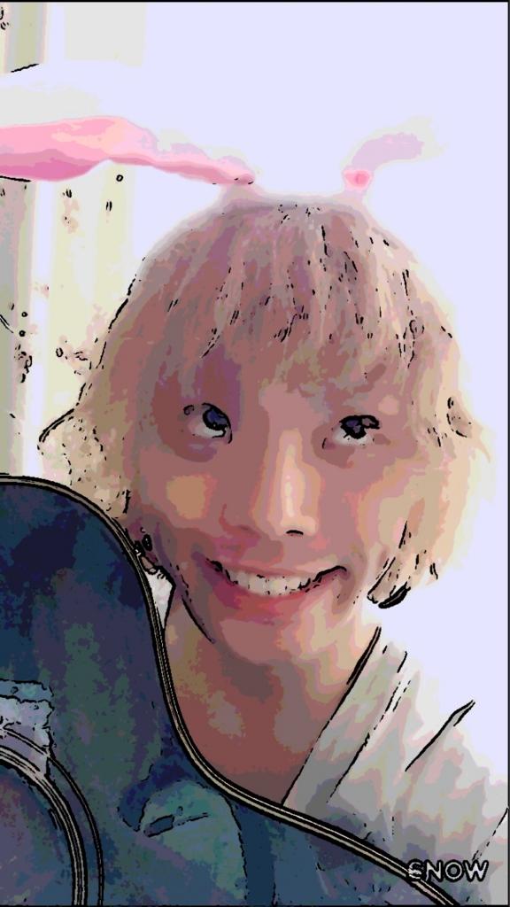 f:id:syoto1988:20170522110335j:plain