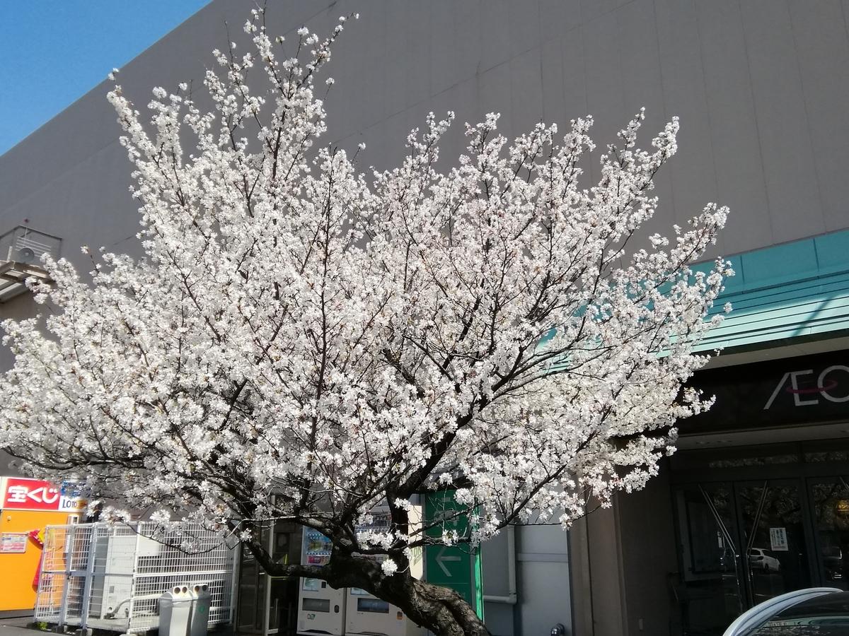 f:id:syougyoushisetsu:20210415125502j:plain