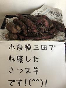 f:id:syoukibosanda:20200110035113j:plain