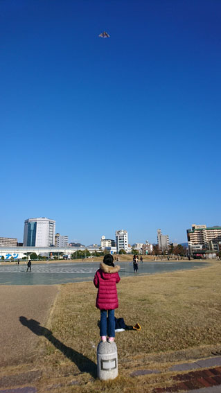 f:id:syoukouji:20180102203842j:plain