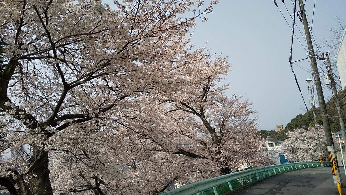 f:id:syoukouji:20210329183210j:plain