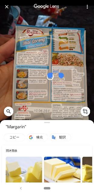 AJINOMOTOのSajikuのNasi Goreng Rasa SeafoodのGooglelens翻訳単語ごとにGoogle検索