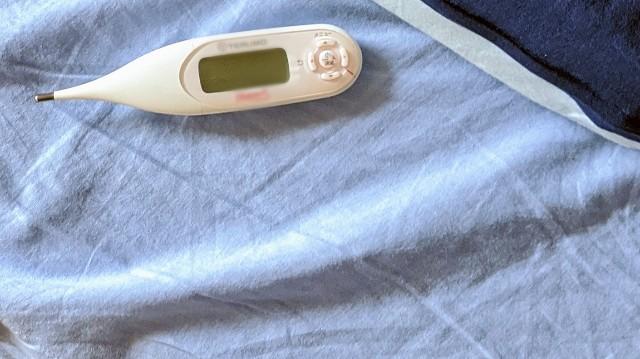 テルモの基礎体温計を枕元に置いている写真