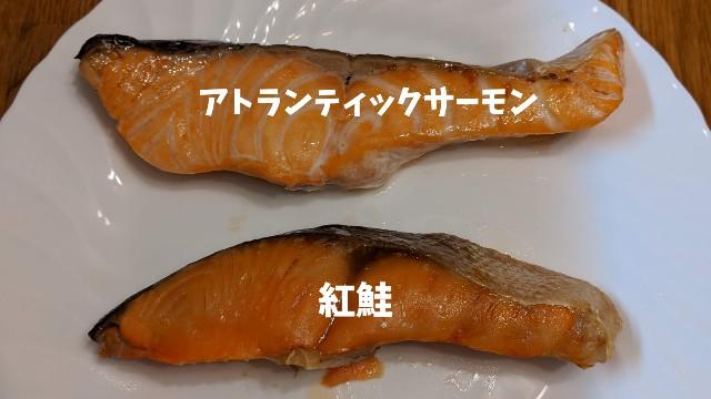 アトランティックサーモンと紅鮭の焼き魚の写真