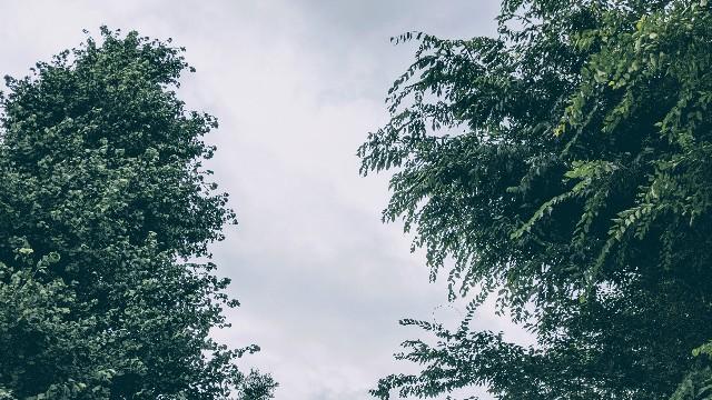 雨の日の空の写真