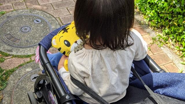 しまじろうパペットを大事に抱えてベビーカーに乗る子供の写真