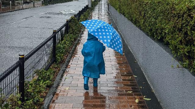 2歳児が雨の中散歩している写真