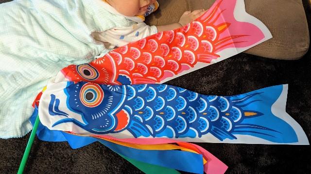 ミニ鯉のぼりと0歳児の写真