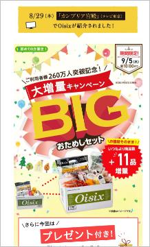 f:id:syufu-switch:20190902114531p:plain