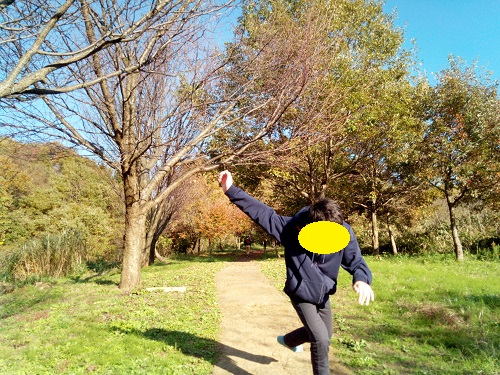 f:id:syufumaruko:20181119161145j:plain
