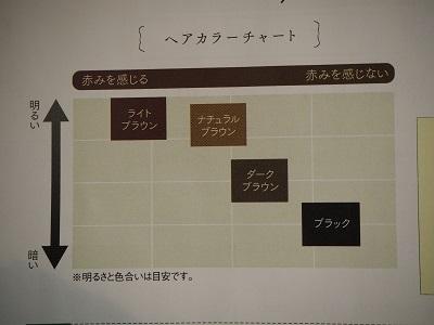 f:id:syufumaruko:20190402081536j:plain