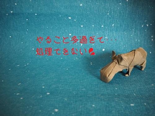 f:id:syufumaruko:20190529125001j:plain