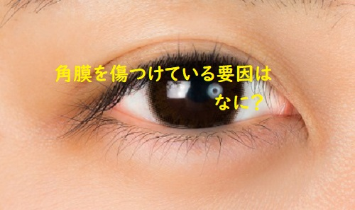 f:id:syufumaruko:20191106135903j:plain