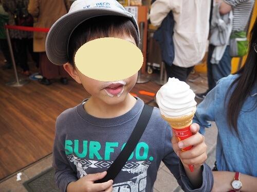 f:id:syufumaruko:20200129094259j:plain