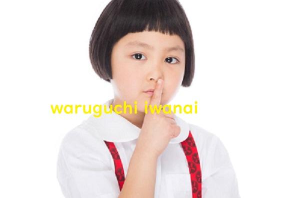 f:id:syufumaruko:20200203135445j:plain