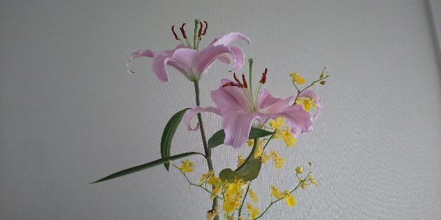 f:id:syufumaruko:20210106105216j:image