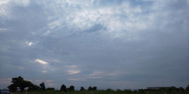 f:id:syufumaruko:20210420112517j:plain