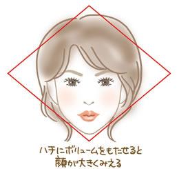 f:id:syufumoni:20161015111057j:plain