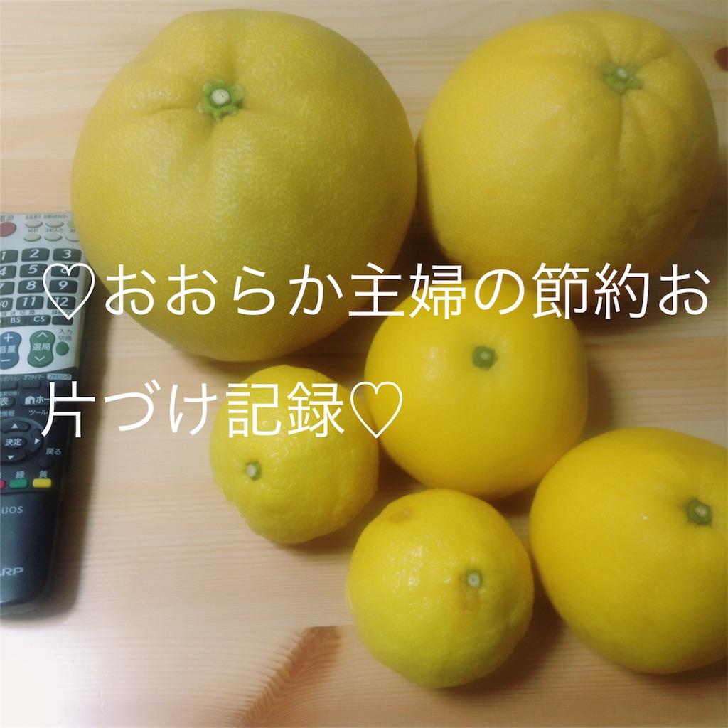f:id:syufunookataduke:20170306184245j:image