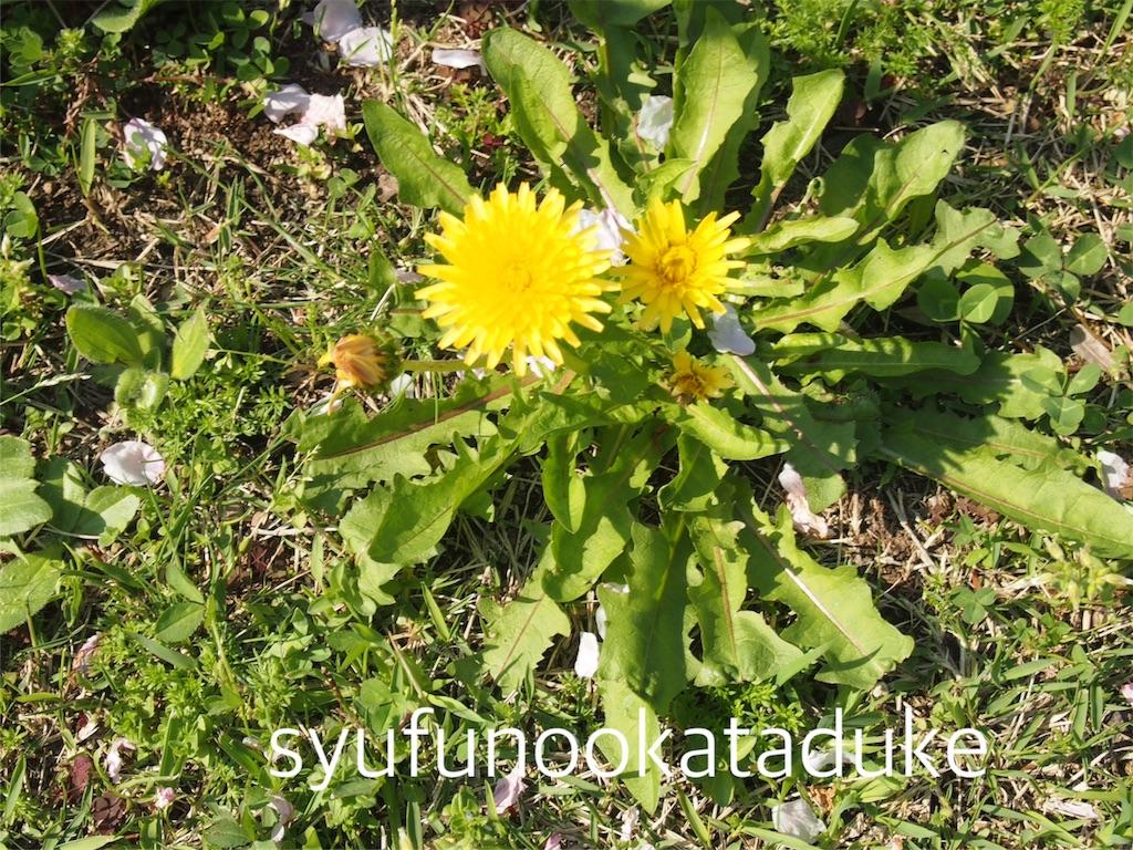 f:id:syufunookataduke:20170418111130j:image