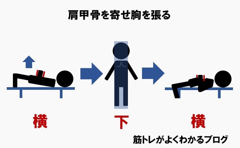 ダンベルフライのやり方③肩甲骨を寄せる