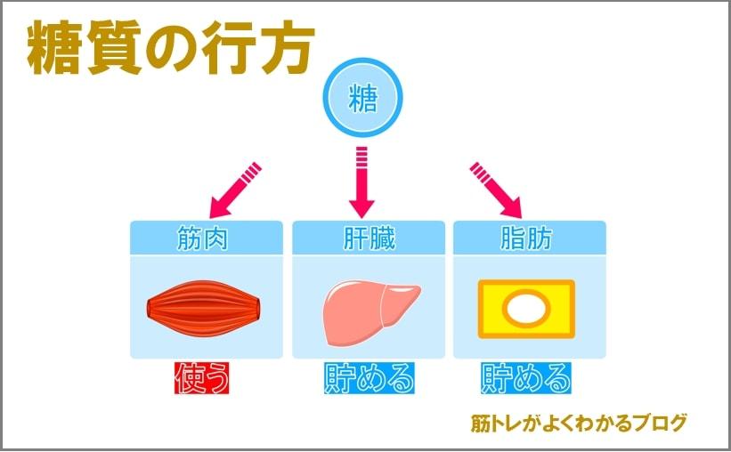 糖質の代謝のイラスト