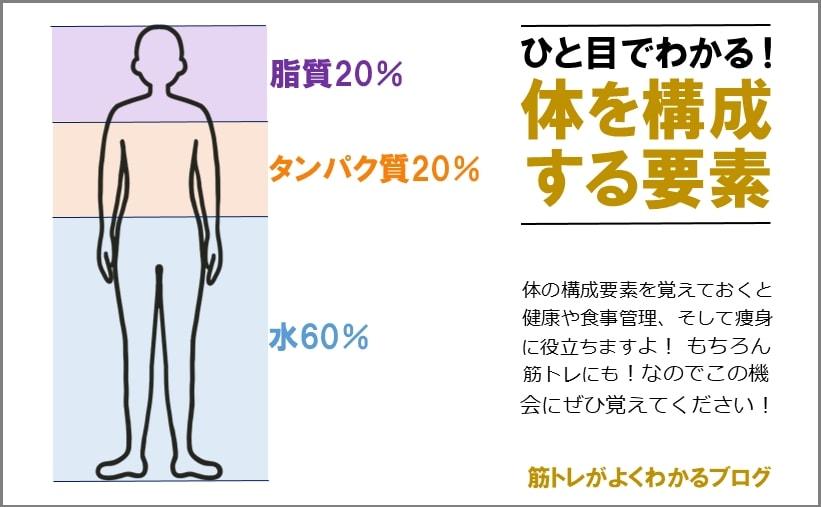 ひと目でわかる人体を構成する成分