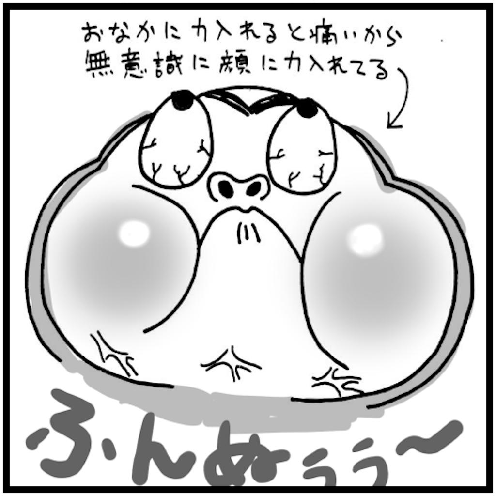f:id:syuhu-gorira:20180503150347p:image