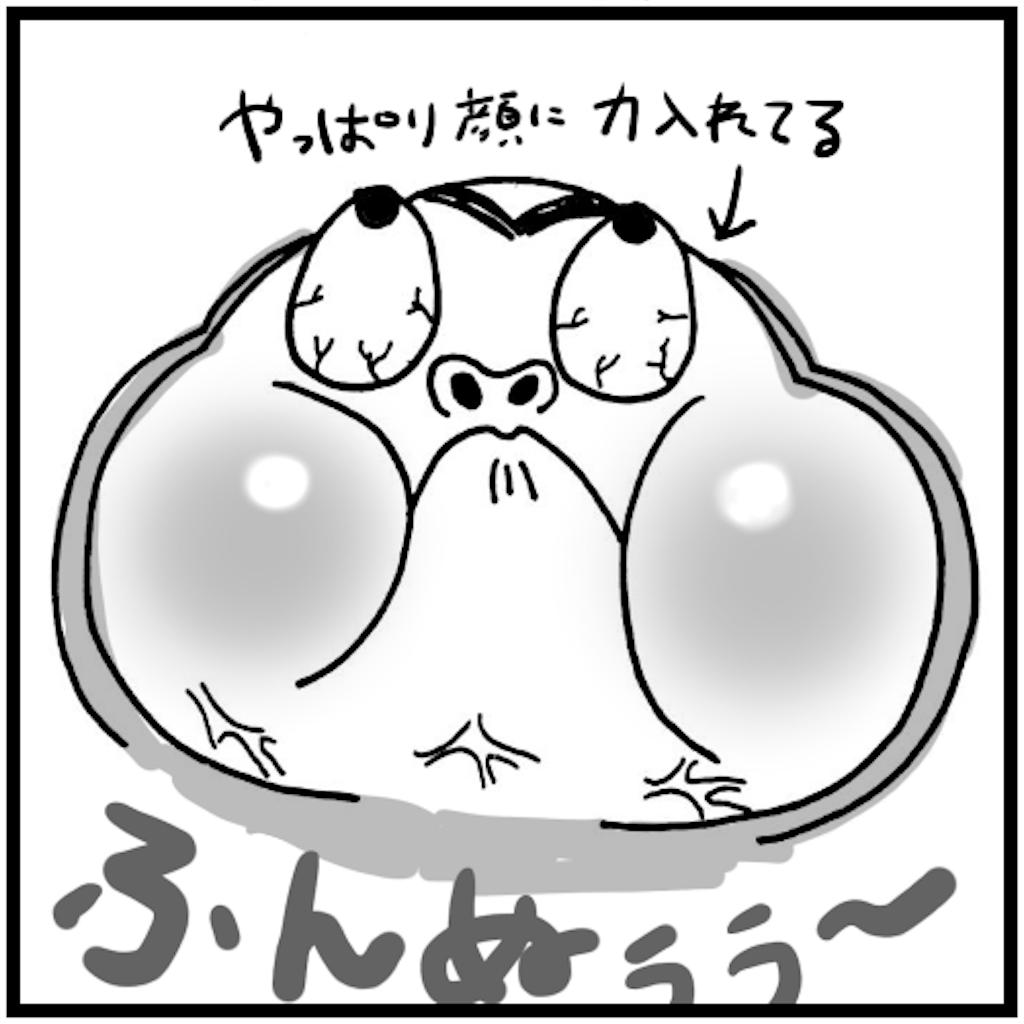 f:id:syuhu-gorira:20180503150513p:image