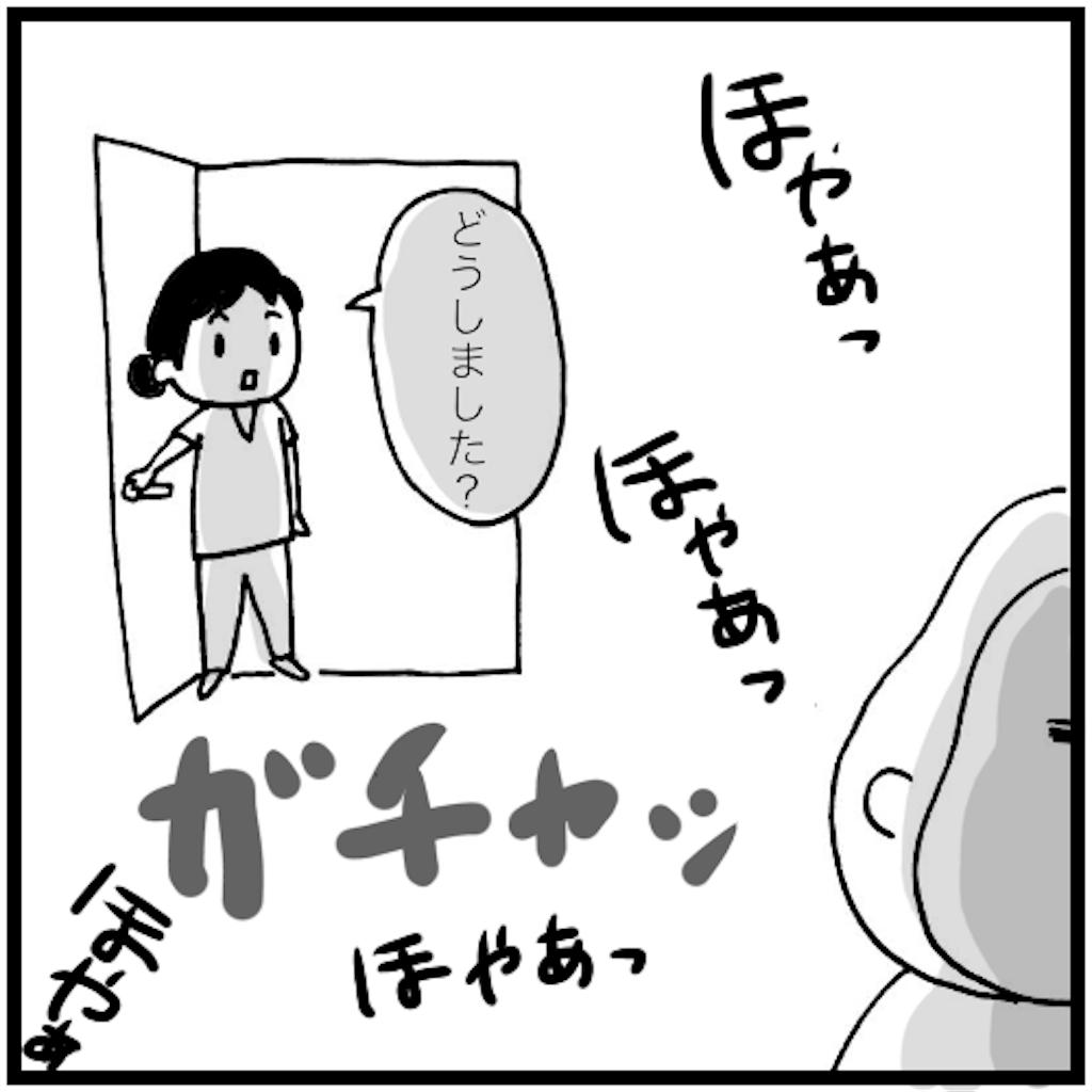 f:id:syuhu-gorira:20180503153721p:image