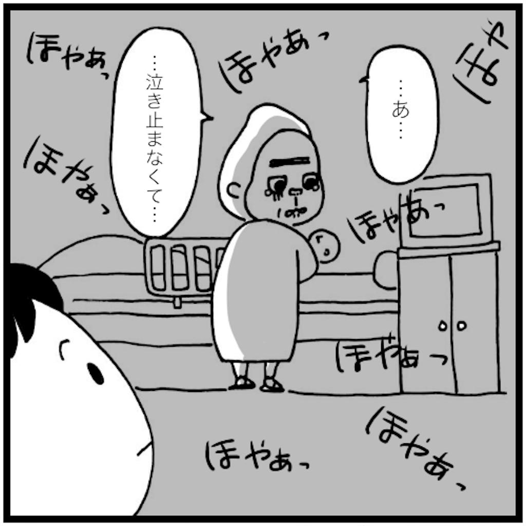 f:id:syuhu-gorira:20180503153735p:image