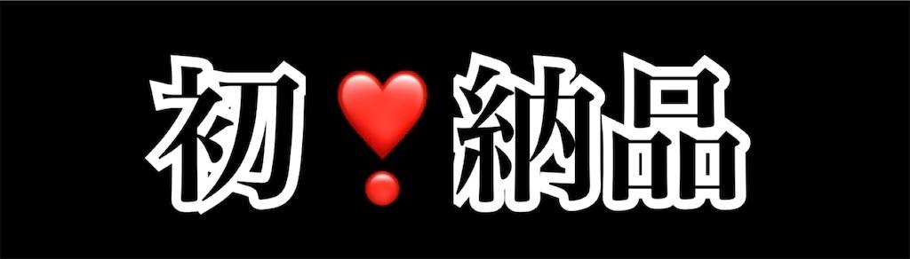 f:id:syuhuno-haruharu:20190531180952j:image