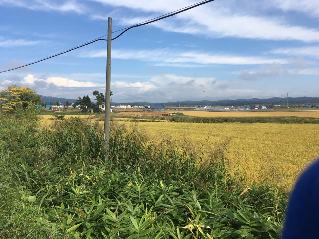 f:id:syujinblog:20180121035741j:plain