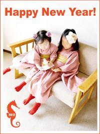 f:id:syuku:20130101024026j:image
