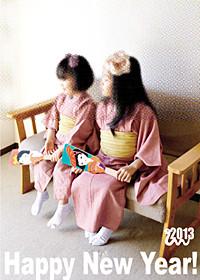 f:id:syuku:20130101025818j:image