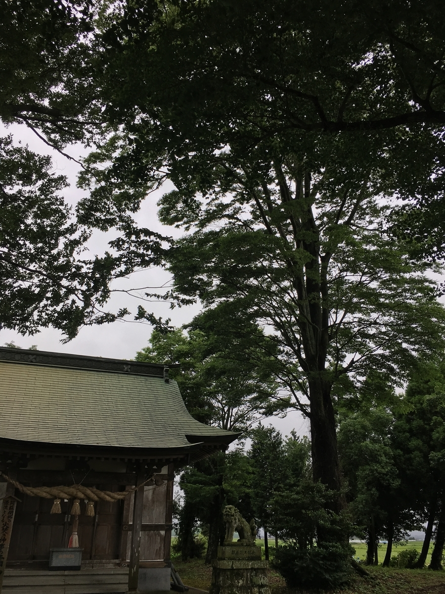 f:id:syukugami:20191124155740j:plain