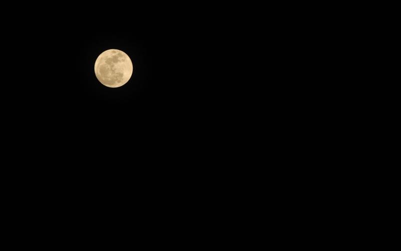 2011/3/19 20:14:08.00