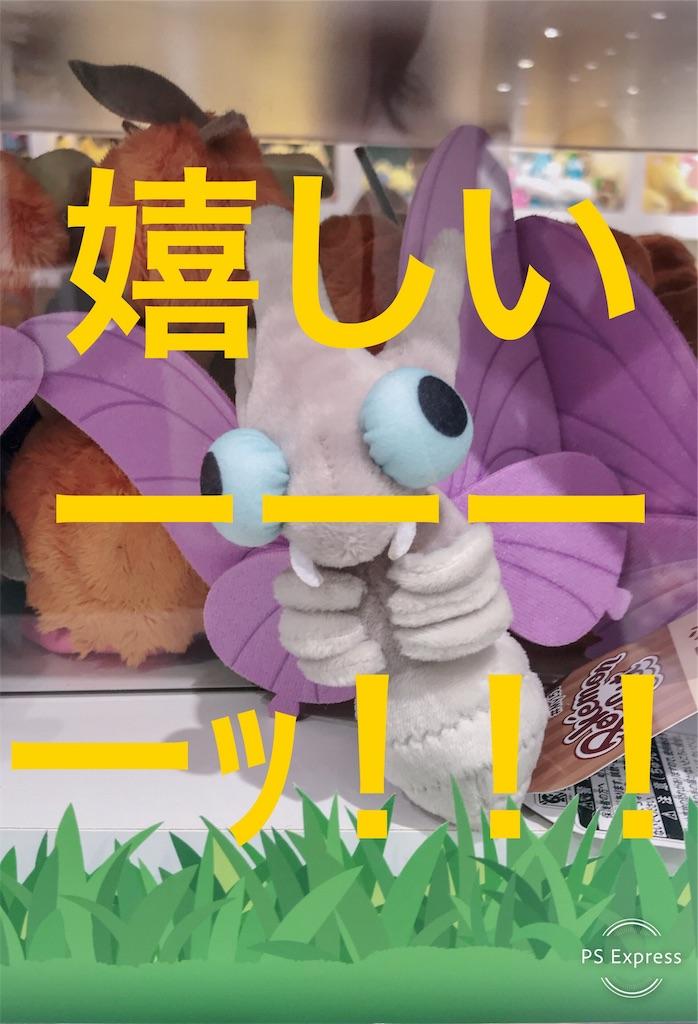 f:id:syumigahosii:20190204164417j:image