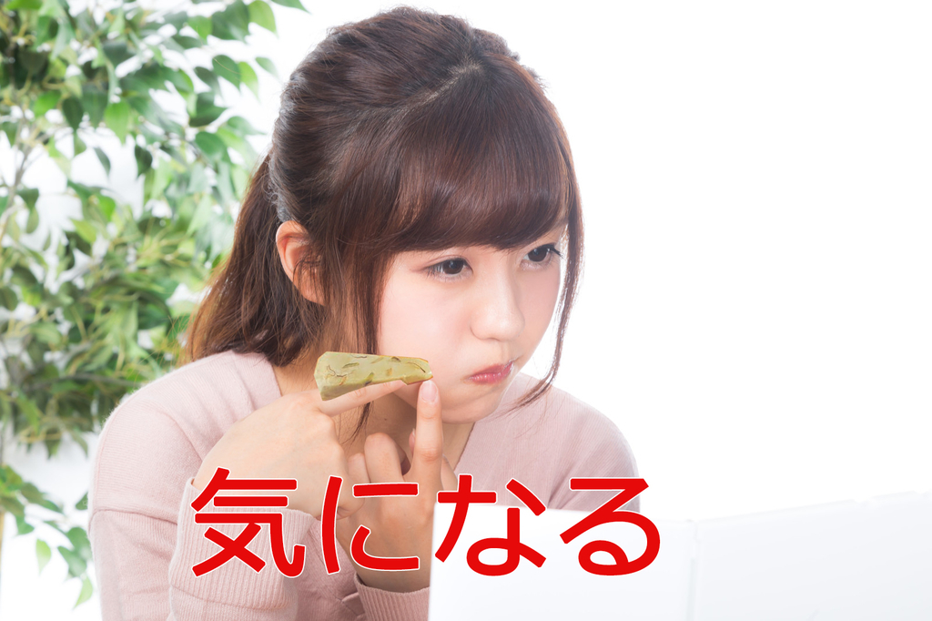 f:id:syumigahosii:20190217213609j:plain