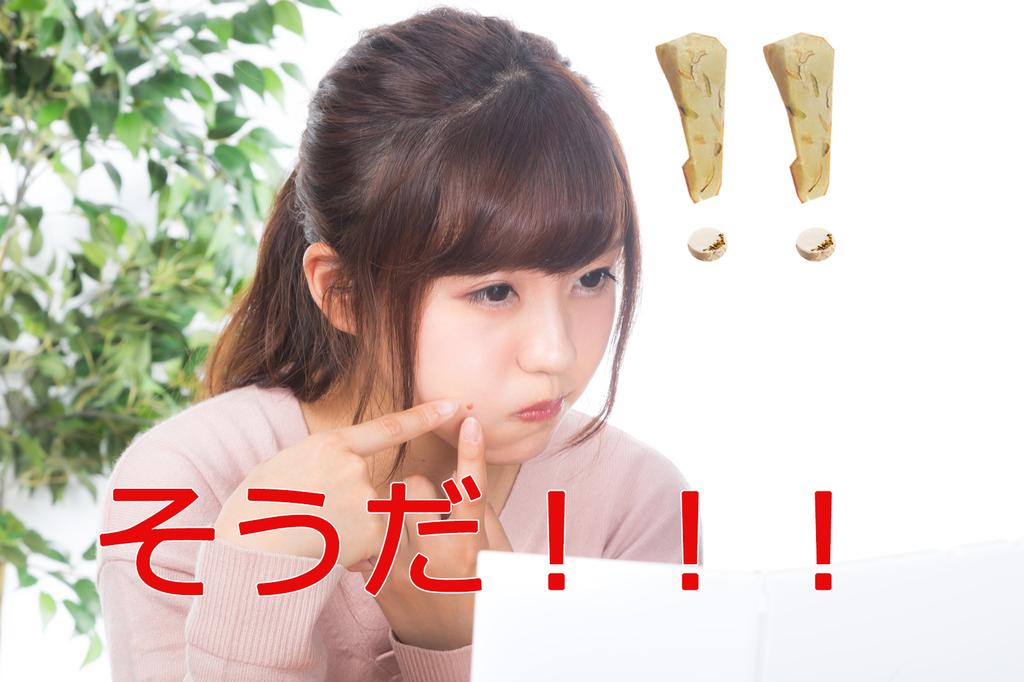 f:id:syumigahosii:20190217214954j:plain