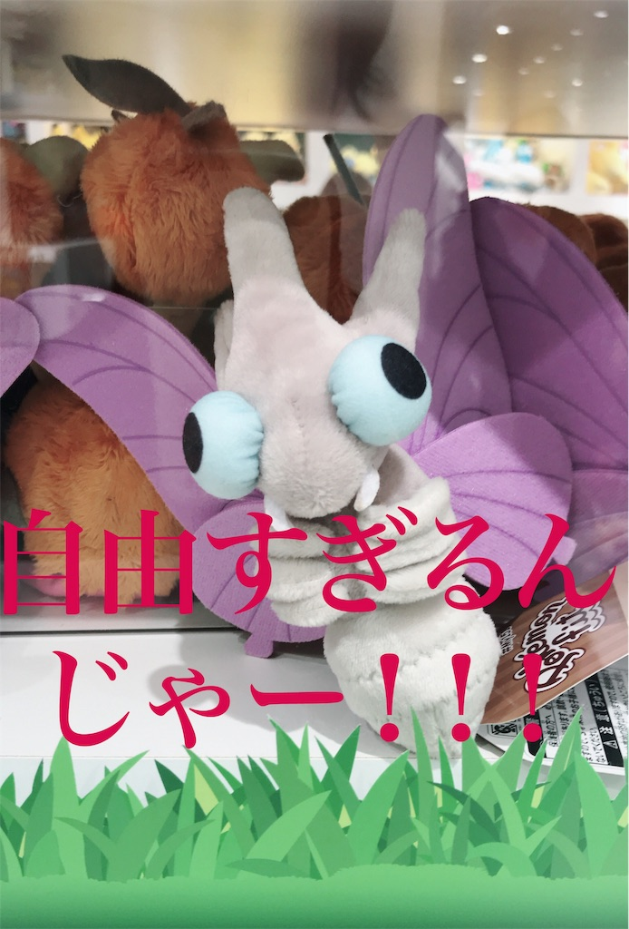 f:id:syumigahosii:20190218171216j:image
