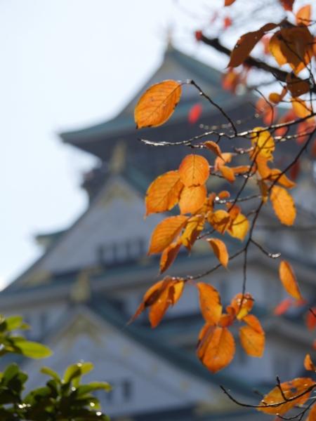 f:id:syunsyun1970:20151205102638j:image
