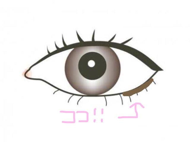 f:id:syusho_biyou:20180820180925j:plain
