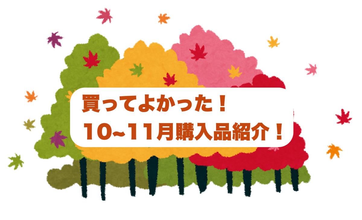f:id:syusho_biyou:20201209180124j:plain