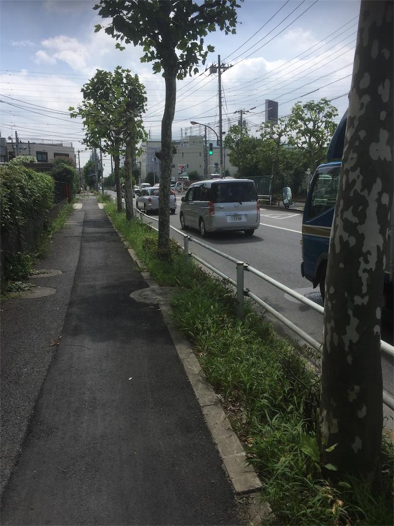 f:id:syusutobokumetushitai:20170728215104j:image