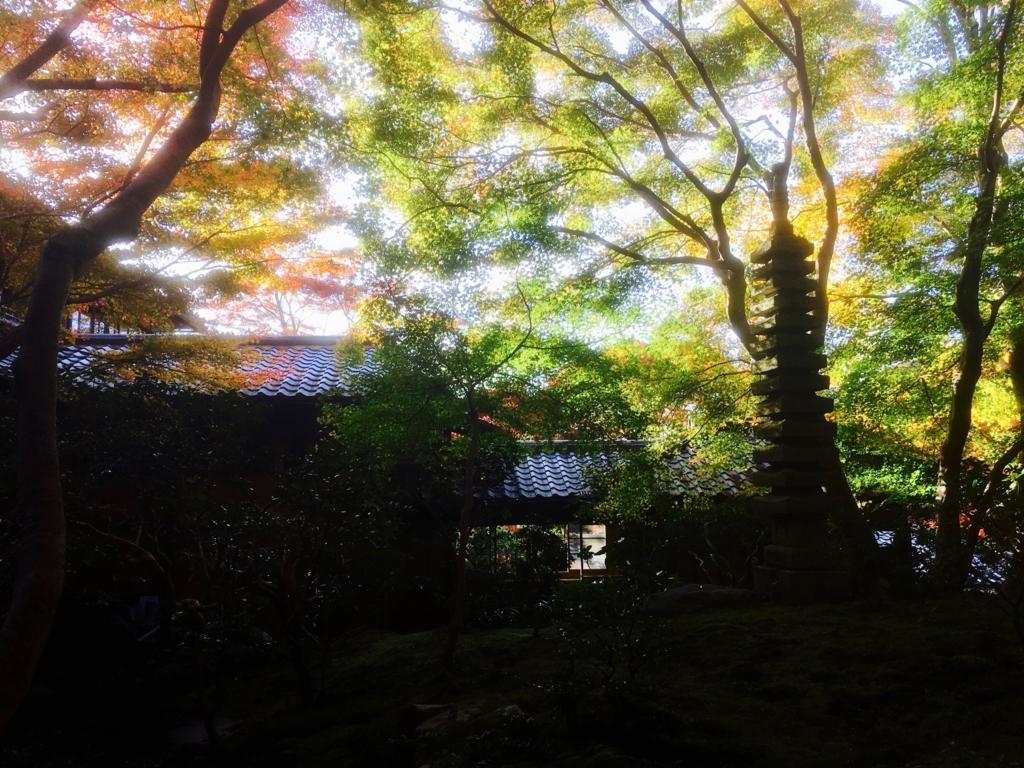f:id:syuuichirou-k:20161117031546j:plain