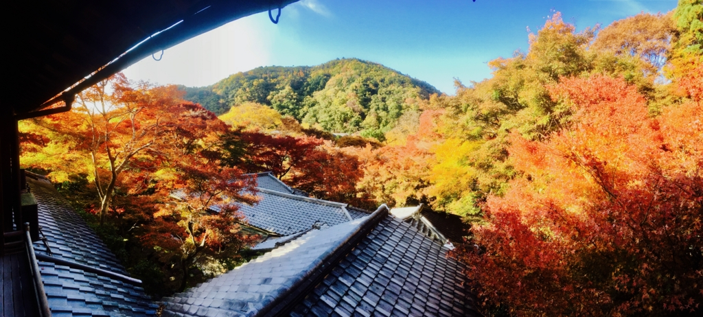f:id:syuuichirou-k:20161117031554j:plain