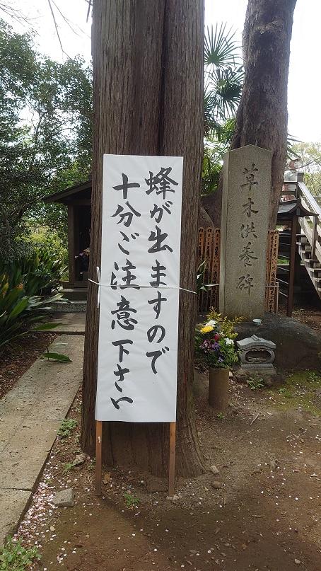 f:id:syuurei0609:20210403121605j:plain