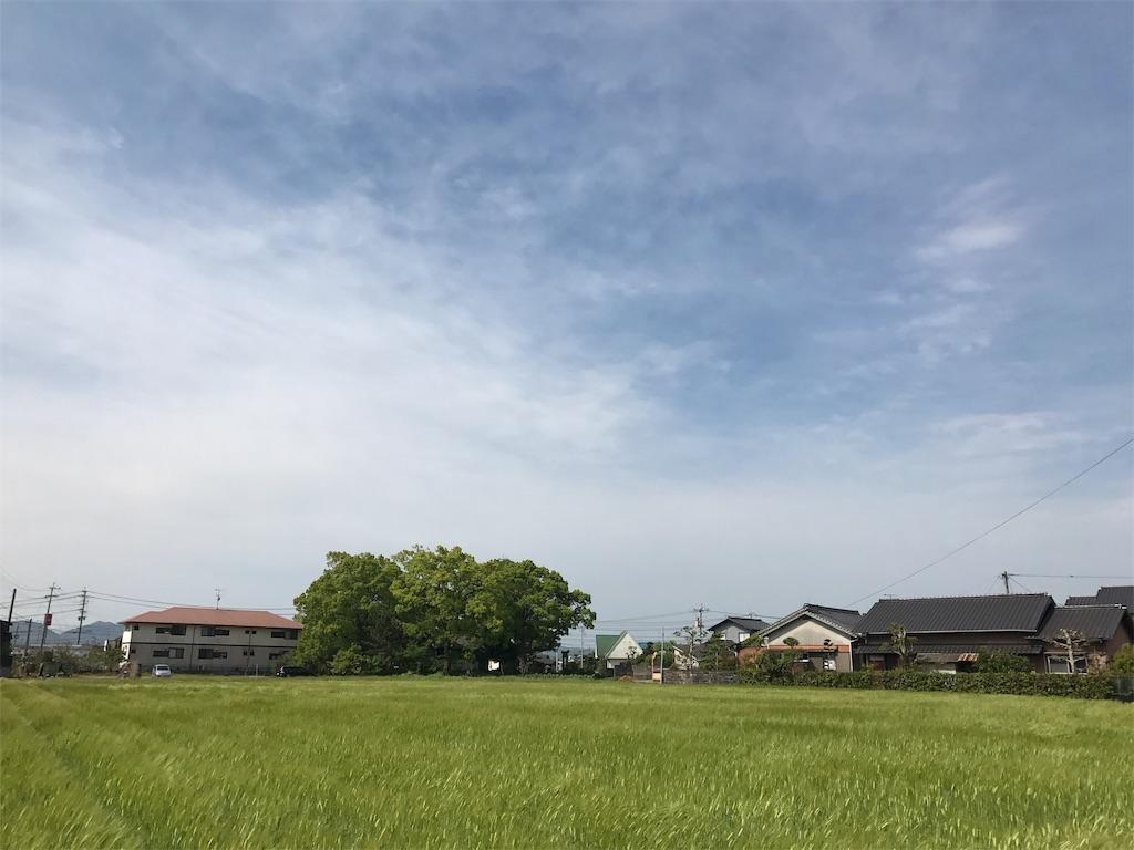 f:id:syuusakukakizoe:20170503094016j:image