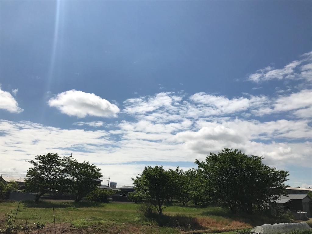 f:id:syuusakukakizoe:20170505100137j:image